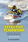 Effective Teamwork - Practical Lessons from Organizational Research